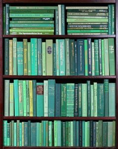 boekenkast-blauwgroen